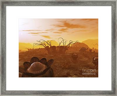 Artists Concept Of Animal And Plant Framed Print by Walter Myers