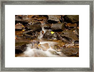 As It Runs Framed Print by Karol Livote