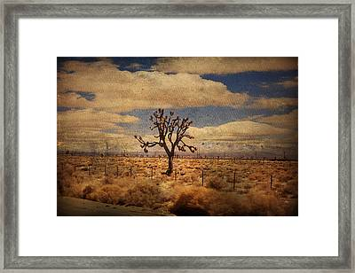 As We Go Down Life's Lonesome Highway Framed Print by Laurie Search