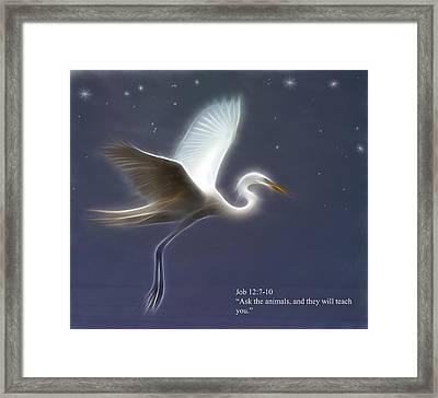 Ask The Animals Framed Print by Hazel Billingsley