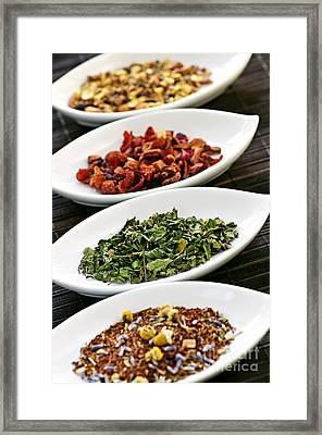 Assorted Herbal Wellness Dry Tea In Bowls Framed Print by Elena Elisseeva