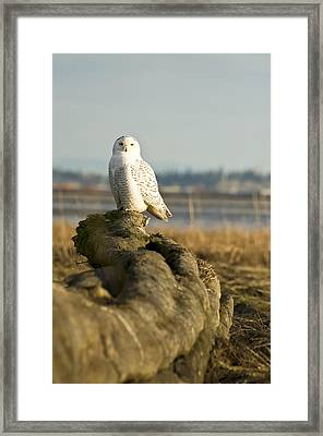 At The End Framed Print by Vern Minard