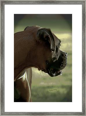 Attention Is Elsewhere...as Usual Framed Print by DigiArt Diaries by Vicky B Fuller