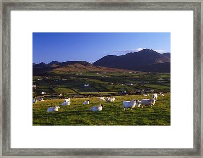 Aughrim Hill, Mourne Mountains, County Framed Print by Gareth McCormack