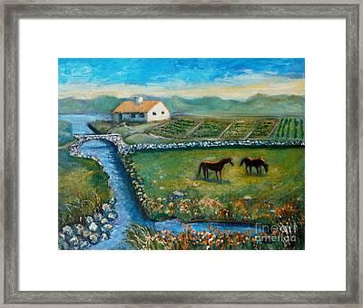 August Evening In Connemara Framed Print by Rita Brown