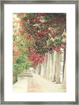 Autumn And Fall Framed Print by Ivy Ho