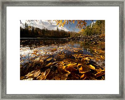 Autumn At Ragged Falls Framed Print by Cale Best