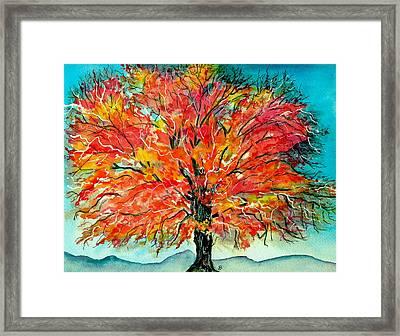 Autumn Beauty Framed Print by Brenda Owen
