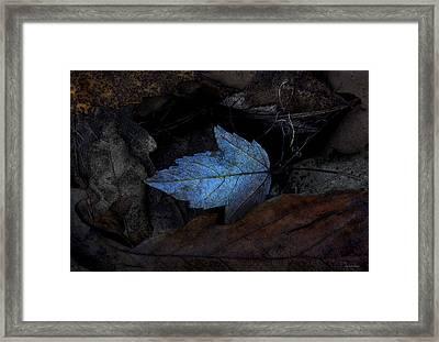 Autumn Blue Framed Print by Ron Jones
