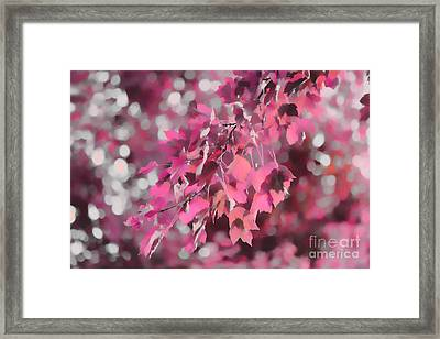 Autumn Blush Framed Print by Jeff Breiman