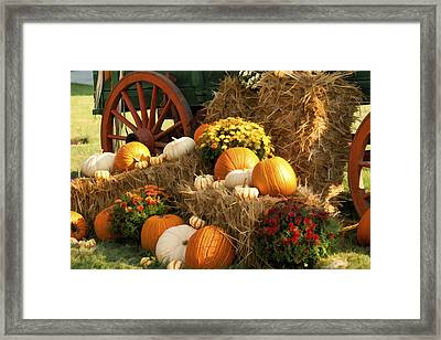 Autumn Bounty Framed Print by Kathy Clark