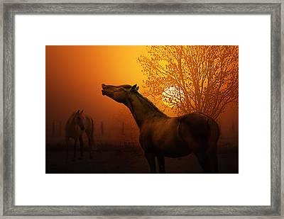 Autumn Breeze Framed Print by Joachim G Pinkawa