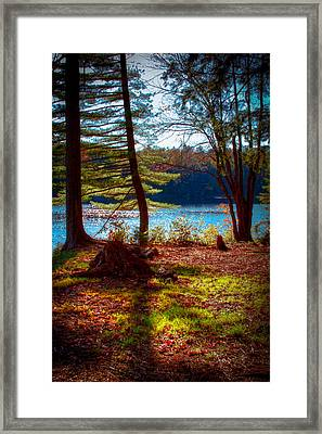 Cary Lake In The Fall Framed Print by David Patterson