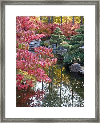 Autumn Color Reflection Framed Print by Carol Groenen
