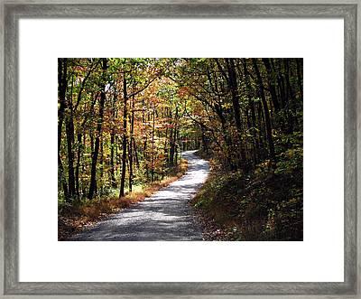 Autumn Country Lane Framed Print by David Dehner