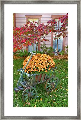 Autumn Display I Framed Print by Steven Ainsworth