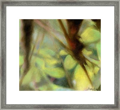 Autumn Dream Framed Print by Andrew King