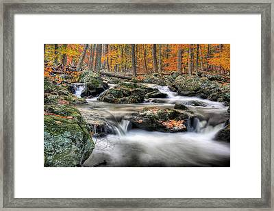 Autumn Dreams Framed Print by JC Findley