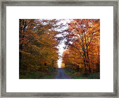 Autumn Fire Framed Print by Terry Eve Tanner