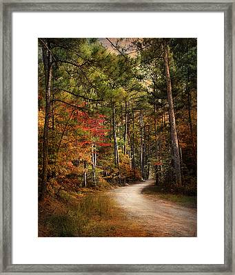 Autumn Forest 2 Framed Print by Jai Johnson