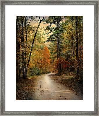 Autumn Forest 4 Framed Print by Jai Johnson