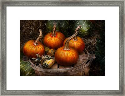 Autumn - Gourd - Pumpkins And Some Other Things  Framed Print by Mike Savad
