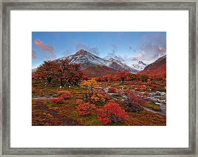 Autumn In Argentina Framed Print by Helminadia
