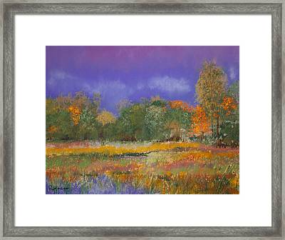 Autumn In Nisqually Framed Print by David Patterson