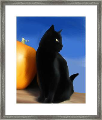 Autumn Kitty Framed Print by Stacy Parker