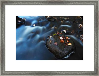 Autumn Leaves In The Stream Framed Print by Andrew Pacheco