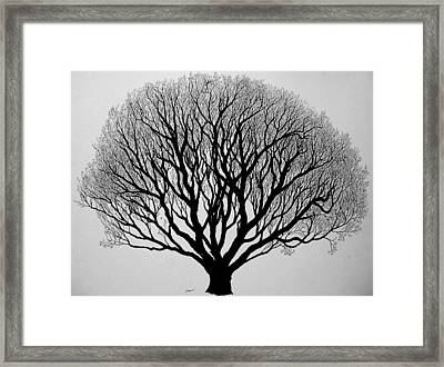 Autumn Framed Print by Marwan Hasna - Art Beat