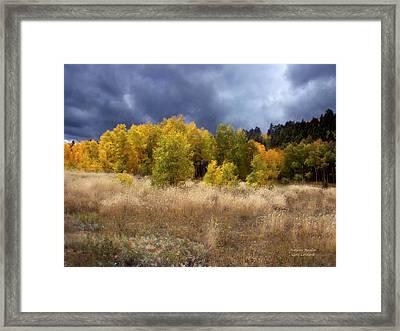 Autumn Meadow Framed Print by Carol Cavalaris
