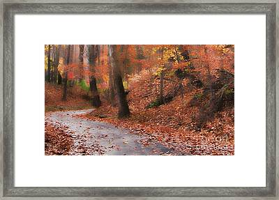Autumn On A Quiet Country Lane Framed Print by Happy Walls