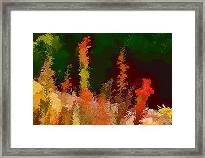 Autumn Pastel Framed Print by Tom Prendergast