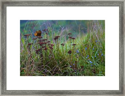 Autumn Pasture Framed Print by Ron Jones
