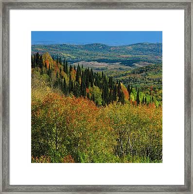 Autumn  Framed Print by Pavel  Filatov