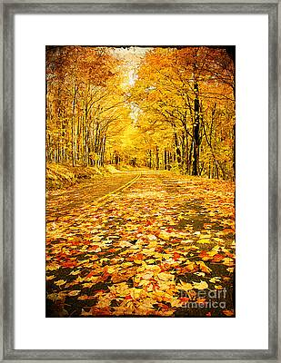 Autumn Road Framed Print by Darren Fisher