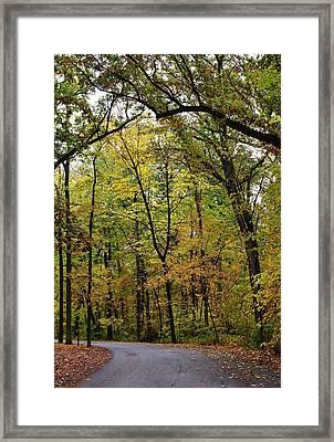 Autumn Sensation Framed Print by Bruce Bley