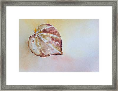 Autumn Shimmer Framed Print by Heidi Smith