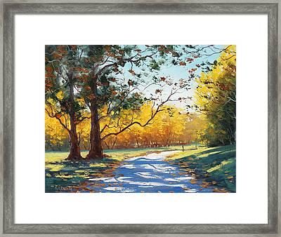 Autumn Splendor Framed Print by Graham Gercken