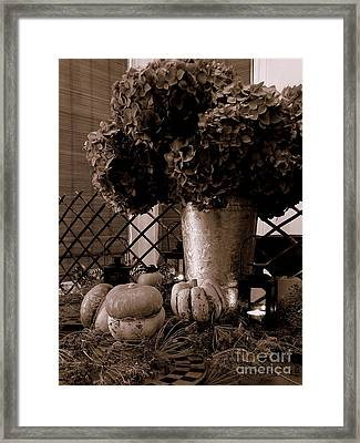 Autumn Still Life  3 Framed Print by Tanya  Searcy