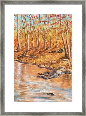 Autumn Stream Framed Print by Jan Amiss