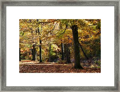 Autumn Stroll Framed Print by Peter Chilelli