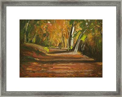 Autumn Woods 4 Framed Print by Paul Mitchell