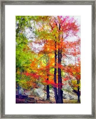 Autumnal Rainbow Framed Print by Angelina Vick
