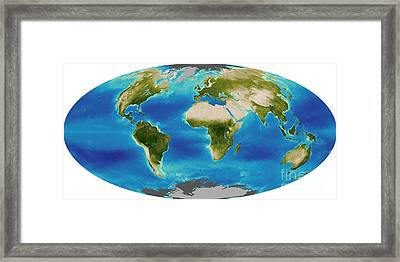 Average Plant Growth Of The Earth Framed Print by Stocktrek Images