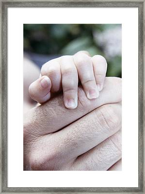 Baby's Hand Framed Print by Cristina Pedrazzini