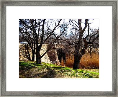 Back Bay Fens Framed Print by Sheryl Burns