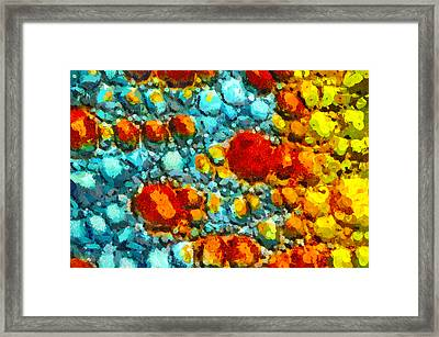 Bacteria 5 Framed Print by Angelina Vick