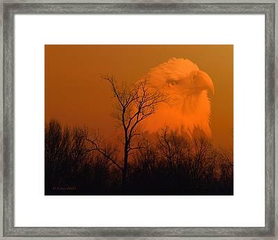 Bald Eagle Spirit Of Reelfoot Lake Framed Print by J Larry Walker